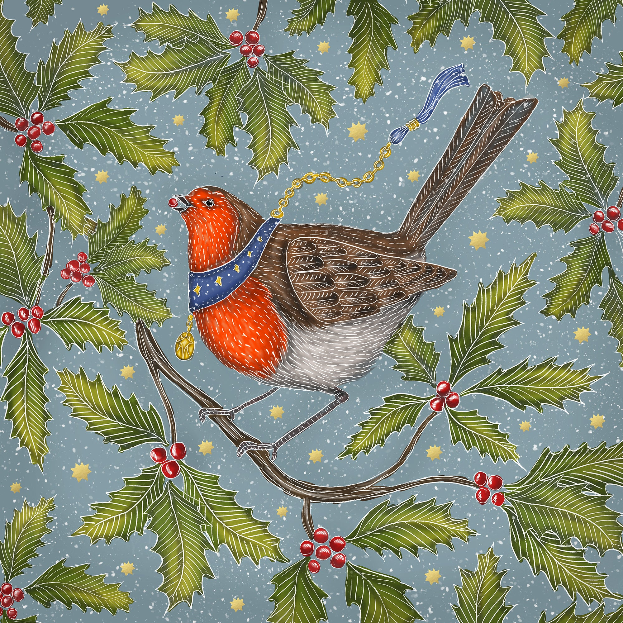 Christmas Robin Christmas Cards