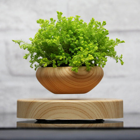 Magnetic Levitation Air Floating Bonsai Plant Pot