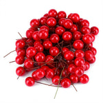 100pcs Artificial Red Holly Berry - Decorations Christmas