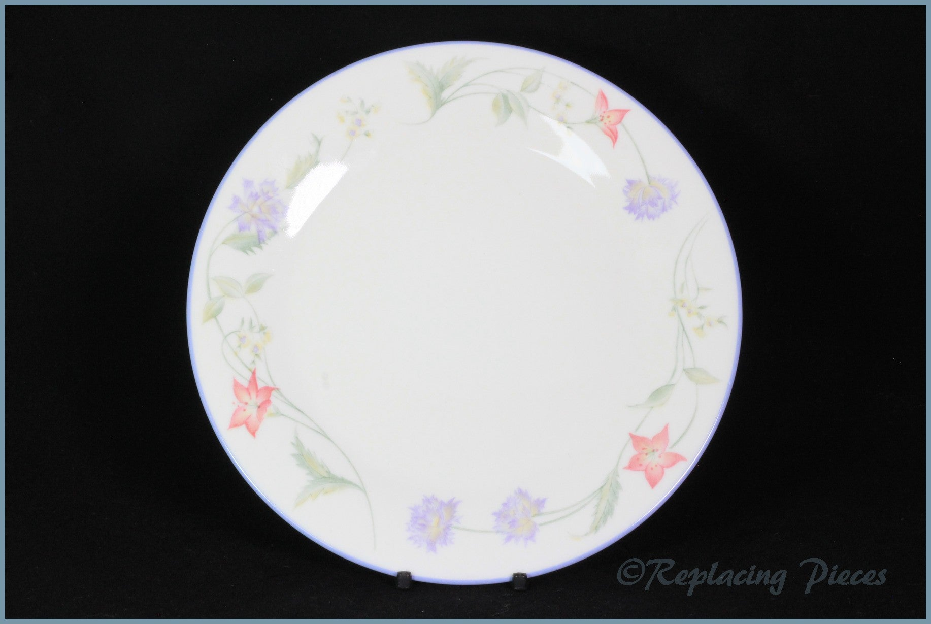 Royal Doulton - Summer Carnival - Dinner Plate