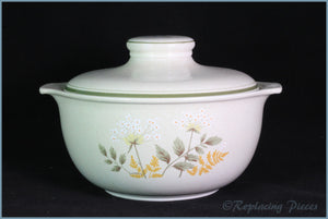 Royal Doulton - Will O The Wisp (LS1023) - 4 Pint Round Casserole