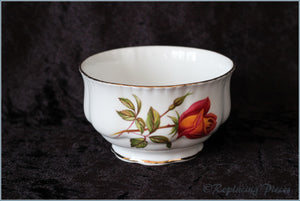 Royal Standard - Unknown 1 - Sugar Bowl
