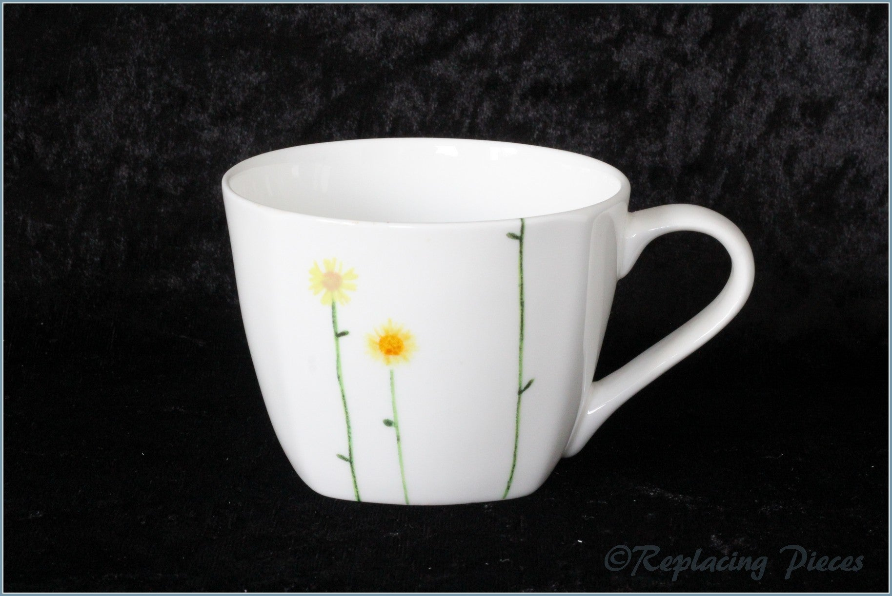 Aynsley - Daisy Chain - Teacup