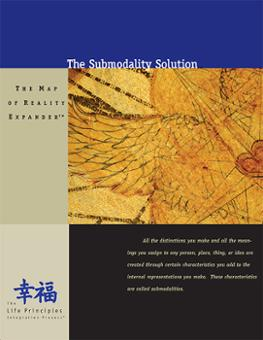 WorkBook - Submodality Solution + CD