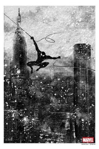 Mark Chilcott - The Web Slinger 2016
