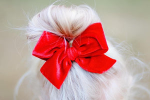 Red Velvet Hand-tied Bow