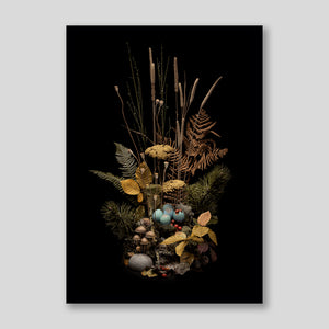 Posterzine™ Issue 54 | Jasper Goodall