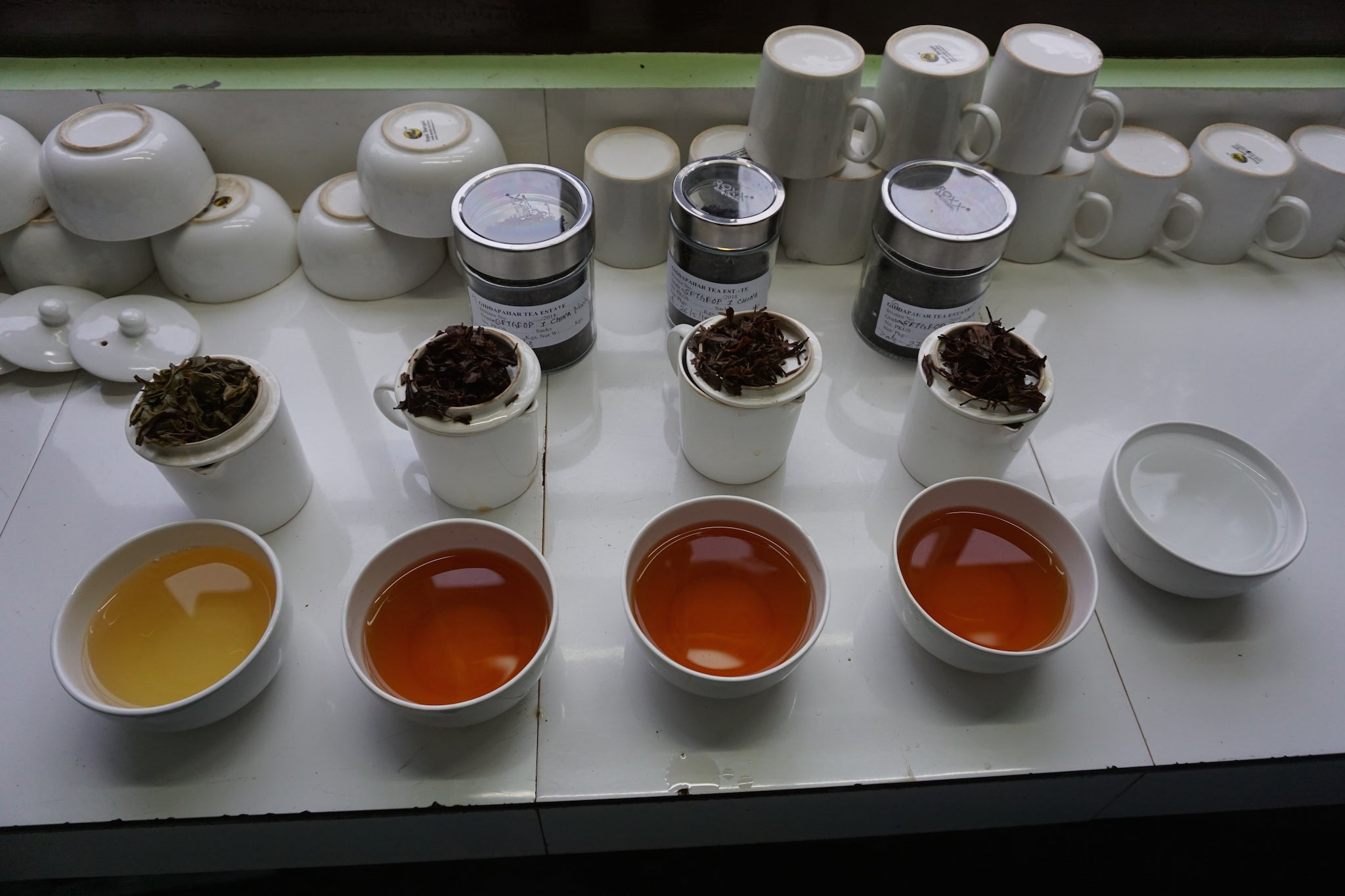 Tea tasting at Giddapahar