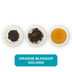 Orange Blossom Oolong loose leaf tea – three cups showing the plain leaf, the unfurled leaf with the water added and then the final brew of tea.
