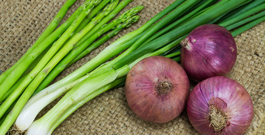 7 Reasons Why You Need Prebiotics