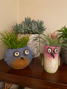 Blobhouse® 'Happy' the Bluebird Planter
