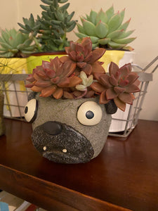 Blobhouse® 'Elliot' Dog Planter