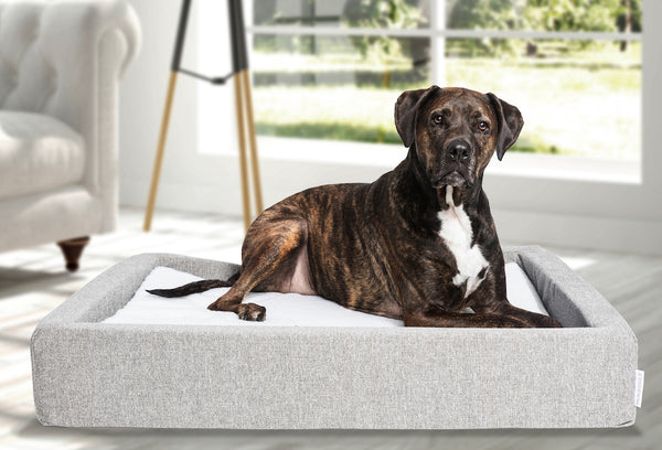 MOLECULE™ Pet Bed