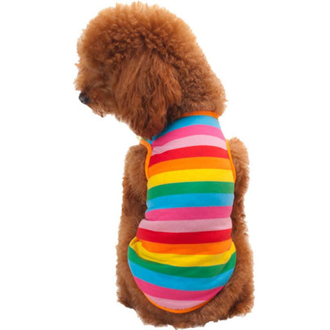 Rainbow Design Shirt for Small Dogs