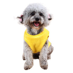 Outer Wear for Small Dogs