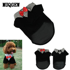 Western Style Men's Suite & Bow Tie Costume for Small Dogs
