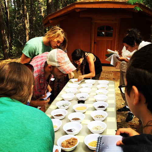 Seed Seva Spring Learning Retreat April 21-22 2018