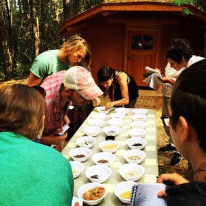 Seed Seva Spring Learning Retreat April 13-14 2019