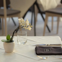 Truffle Bistrot: Table Storie