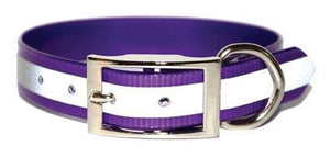 Miller's Point FIELDDOG - DOG - DOG COLLAR Miller's Point, Reflective Stripe Dog Collar, Purple