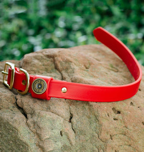 Miller's Provision Co. FIELDDOG - DOG - DOG COLLAR Miller's Provision Co., The Sportsman Dog Collar, Fire Red