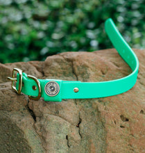 Load image into Gallery viewer, Miller's Provision Co. FIELDDOG - DOG - DOG COLLAR Miller's Provision Co., The Sportsman Dog Collar, Neon Green