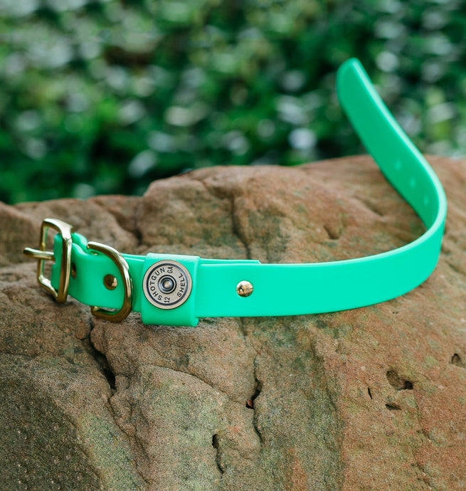Miller's Provision Co. FIELDDOG - DOG - DOG COLLAR Miller's Provision Co., The Sportsman Dog Collar, Neon Green