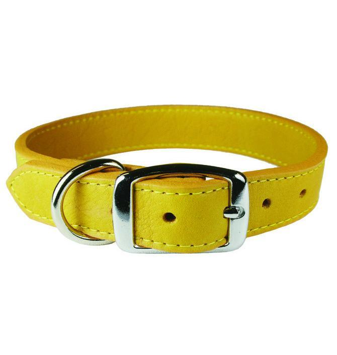 Miller's Provision Co. FIELDDOG - DOG - DOG COLLAR Miller's Provsion Co., Luxury Leather Dog Collar, Goldenrod