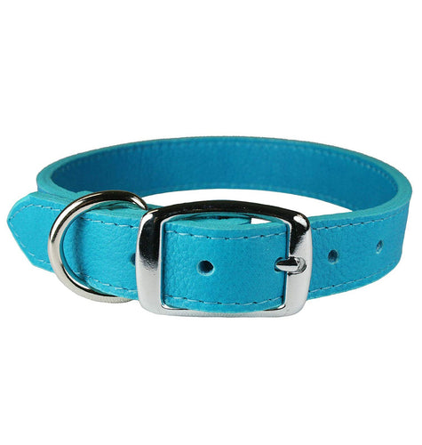 Miller's Provision Co. FIELDDOG - DOG - DOG COLLAR Miller's Provsion Co., Luxury Leather Dog Collar, Turquoise