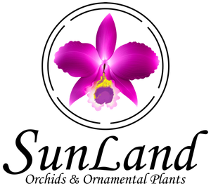 SunLand Orchids & Ornamental Plants LLC