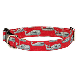 Nantucket Whale #23 Dog Collar - Red