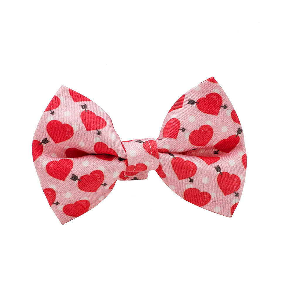 Our Good Dog Spot Be Mine Red Valentine Bow Tie