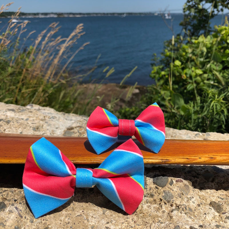 Our Good Dog Spot Ivy League Repp Stripe Bow Tie Red and Blue