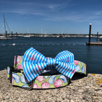 Our Good Dog Spot Caribbean Blue Oxford Stripe Anchor Bowtie and Muscles and Clams dog collar