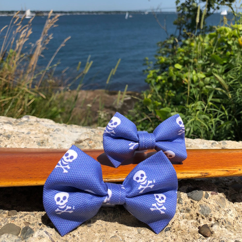 Our Good Dog Spot Charles River Bow Tie Skull Blue
