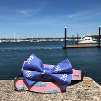 Our Good Dog Spot Pink Nantucket Whale 23 Dog Collar and Charles River Bow Tie Skull Blue