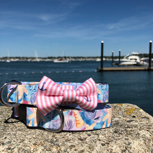 Our Good Dog Spot Sun Kissed Coral Oxford Anchor Bowtie and Seashells dog collar