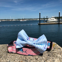 Our Good Dog Spot Crystal Blue Oxford Stripe Anchor Bowtie and Sailfish Frenzy dog collar
