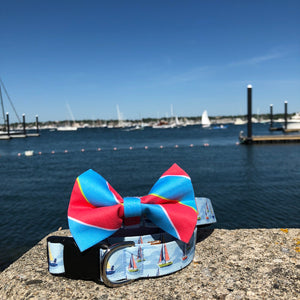Our Good Dog Spot Sailboat Dog Collar and Ivy League Repp Stripe Bow Tie Red and Blue