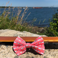Our Good Dog Spot Coral Martini Bowtie