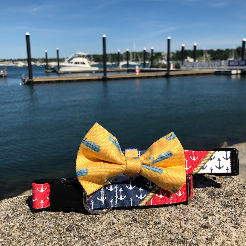 Our Good Dog Nautical Pride Dog Collar and Yellow Nantucket Whale #23 Bow Tie