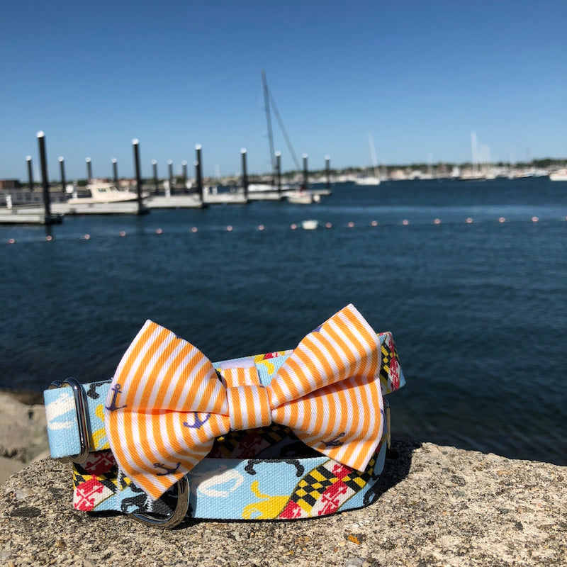 Our Good Dog Spot Sunset Gold Oxford Stripe Anchor Bowtie and Maryland Flag and Crab dog collar