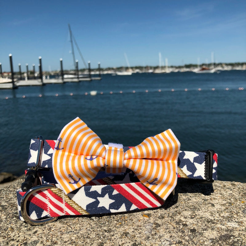 Our Good Dog Spot Sunset Gold Oxford Stripe Anchor Bowtie and Stars and Stripes Forever dog collar