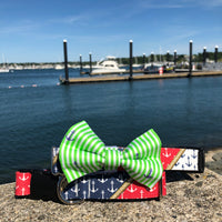 Our Good Dog Spot Nautical Pride Dog Collar and Preppy Green Oxford Stripe Anchor Bow Tie