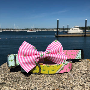 Our Good Dog Spot Palm Beach Anchor Dog Collar and Oxford Pink Stripe Anchor Bow tie