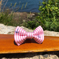 Our Good Dog Spot Sun Kissed Coral Oxford Anchor Bowtie