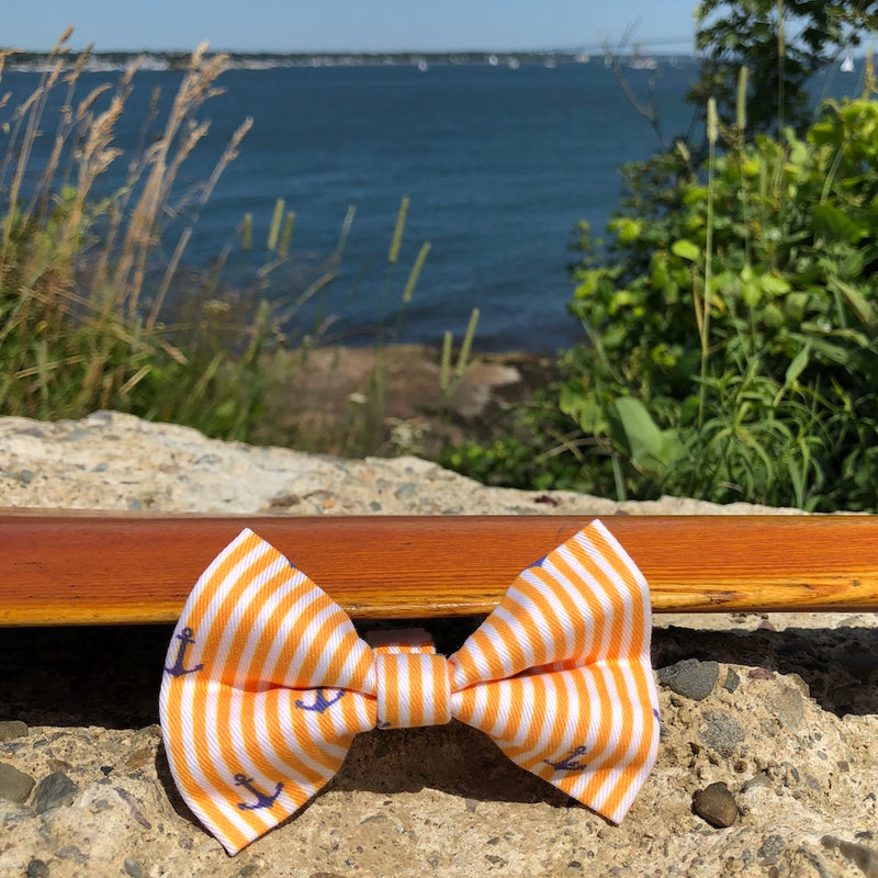 Our Good Dog Spot Sunset Gold Oxford Stripe Anchor Bowtie