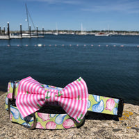 Our Good Dog Spot Preppy Pink Oxford Stripe Anchor Bowtie and Muscles and Clams dog collar