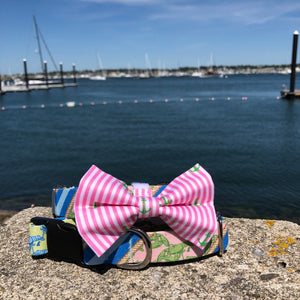 Our Good Dog Spot Preppy Pink Oxford Stripe Anchor Bowtie and Pink Blue and Green Uptown Lobster dog collar