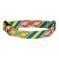 Our Good Dog Spot Uptown Dog Collar Red Yellow and Blue